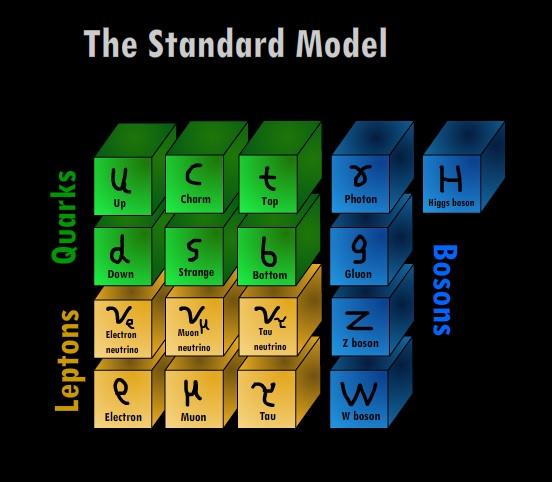 standard-model